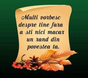 multi-vorbesc